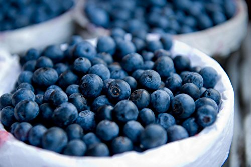 Close-Up Image Of Blueberries Inside A Basket Wall Decal - 24 Inches W X 16 Inches H - Peel And Stick Removable Graphic