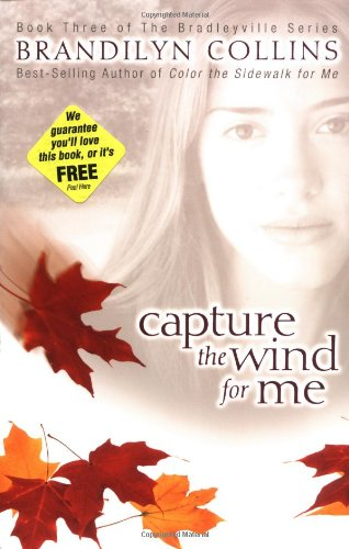 Capture The Wind For Me (The Bradleyville Series #3)