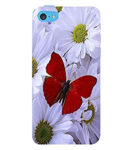 Vizagbeats Red Butterfly Back Case Cover for Apple iPhone 5::Apple iPhone 5S
