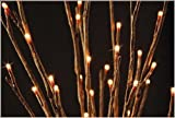 The Light Garden WLWB60 Lighted Willow Branch with 60 Bulbs, 20-Inch Tall