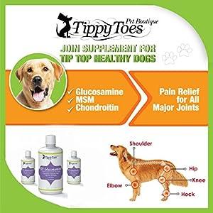 Buy Premium Cheap Dog Food Australia
