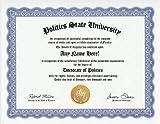 Politics Degree: Custom Gag Diploma Doctorate Certificate (Funny Customized Joke Gift - Novelty Item)