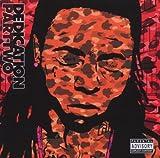 Lil' Wayne Dedication Part 2