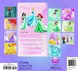 Disney Princess 2014 Wall Calendar