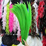 Maslin 50pcs 45-50CM/long Silver Pheasant Tail Feathers DIY Wedding Decorations Lady Amherst red Silver Chicken Feather Plume - (Color: Apple Green) (Color: Apple green)