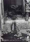 地を這うように―長倉洋海全写真1980‐95 (フォト・ミュゼ)