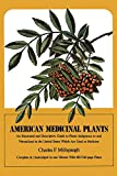 img - for American Medicinal Plants: An Illustrated and Descriptive Guide to Plants Indigenous to and Naturalized in the United States Which Are Used in Medicine book / textbook / text book