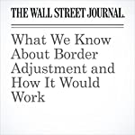 What We Know About Border Adjustment and How It Would Work | Richard Rubin