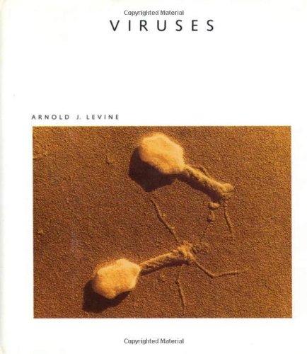 Viruses (Sal 37) (Scientific American Library)