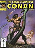 img - for The Savage Sword of Conan #178 book / textbook / text book