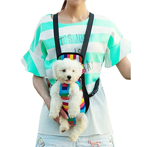 iEFiEL Summer Days Pets Dogs Cats Shopping Protable Carrier Bag Easy Access (S (0-5.5 lb), Rainbow Stripe)
