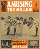 Amusing the Million: Coney Island at the Turn of the Century (American Century)