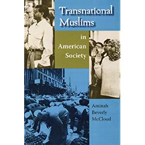 Transnational Muslims in American society
