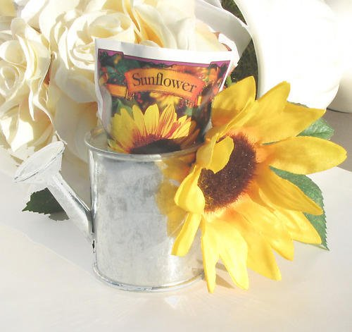 Sunflower Seed Wedding Favors Sunflower Seed Burnt Orange