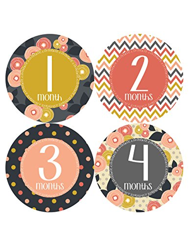 Months in Motion 385 Monthly Baby Stickers Baby Girl Milestone Sticker
