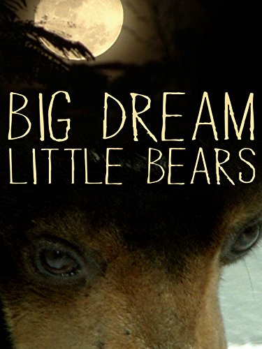 Big Dream Little Bears