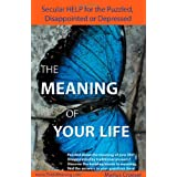The Meaning of Your Life - Secular Help for the Puzzled, Disappointed or Depressed.by Marius Croeser