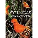Cotingas and Manakins