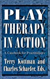 img - for Play Therapy in Action: A Casebook for Practitioners book / textbook / text book