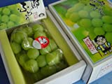 フルーツyamakiti 岡山産 桃太郎ぶどう 化粧箱 700g大房 ランキングお取り寄せ
