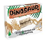 Dinosaur Construction Kit and Activit...