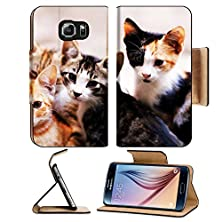 buy Msd Samsung Galaxy S6 Flip Pu Leather Wallet Case Cat Looking At The Camera Close Up Shot Image 22270368