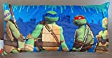 Nickelodeon Teenage Mutant Ninja Turtle Body Pillow