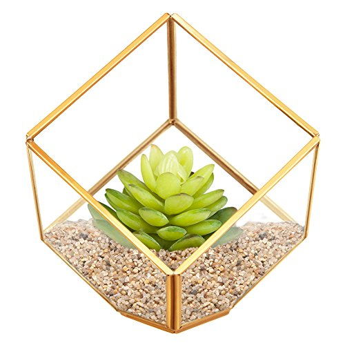 HOMEIDEAS Clear Glass Metal Faceted Decorative Box / Plant Terrarium Display / Air Plant & Cacti Holder Case 4.3 x 4.3 x 4.3 Inches(golden)