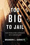 img - for Too Big to Jail: How Prosecutors Compromise with Corporations book / textbook / text book