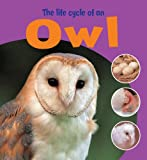 Ruth Thomson Learning About Life Cycles: The Life Cycle of an Owl