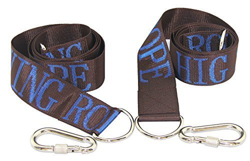 Best Price HIG Tree Swing straps - Safety swing handing rope, Adjustable and easy installation, Swin...