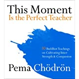 This Moment Is the Perfect Teacher: Ten Buddhist Teachings on Cultivating Inner Strength and Compassion ~ Pema Chodron