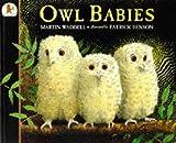 Martin Waddell Owl Babies (Big Books)