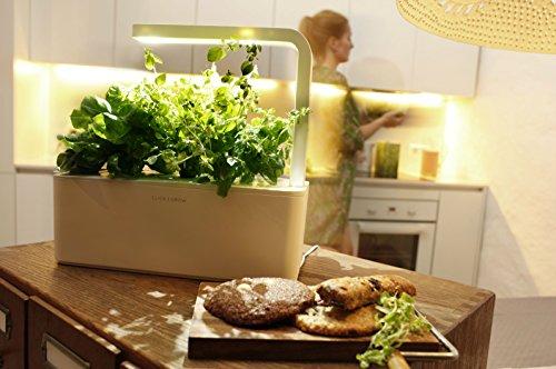 Indoor Herb Garden Kits Best Growing Kits On Flipboard