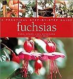 Fuchsias: A Practical Step-By-Step Guide