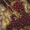 Ripening Berries by Nicole Etienne