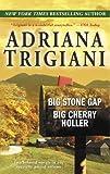 Big Stone Gap Big Cherry Holler (0345486617) by Trigiani, Adriana