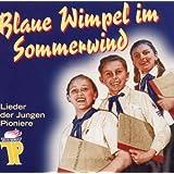 Blaue Wimpel im Sommerwind