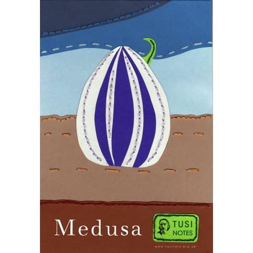 Analytical essay of the poem Medusa by Carol Ann Duffy