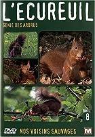 Nos voisins sauvages : L'écureuil : Génie des arbres