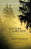 img - for Letters to My Son: A Father's Wisdom on Manhood, Life, and Love book / textbook / text book