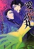 愛の弾丸 (幻冬舎ルチル文庫)