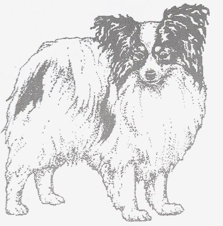 Dog Rubber Stamp - Papillon-1E (Size: 2