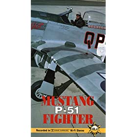 The Roaring Glory Warbirds, P-51 Mustang Fighter from WW2, these are some of the best videos