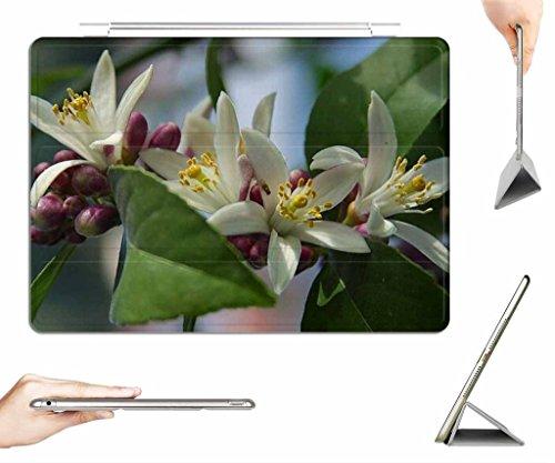 irocket-ipad-pro-97-case-transparent-back-cover-myer-lemon-blossom-auto-wake-sleep-function