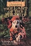 The Last of the Breed (The Adventures of Wishbone #16)