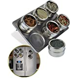 Zoozio® 6 Piece Stainless Steel Magnetic Spice Rack