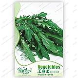 Original Pack 120 Seeds / Pack,Vegetable Eruca Sativa Seeds,arugula,Potted Plant Balcony Vegetable,plant Seeds