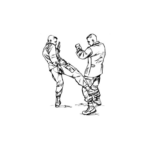 us-army-field-manual-fm-3-25150-21-150-combatives