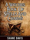 img - for A Witches Book Of Spells And Charms book / textbook / text book